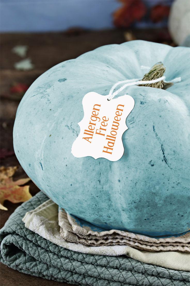 1002-allergen-free-halloween-candy