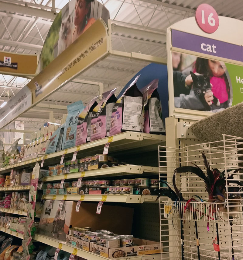 1014-muse-in-cat-aisle