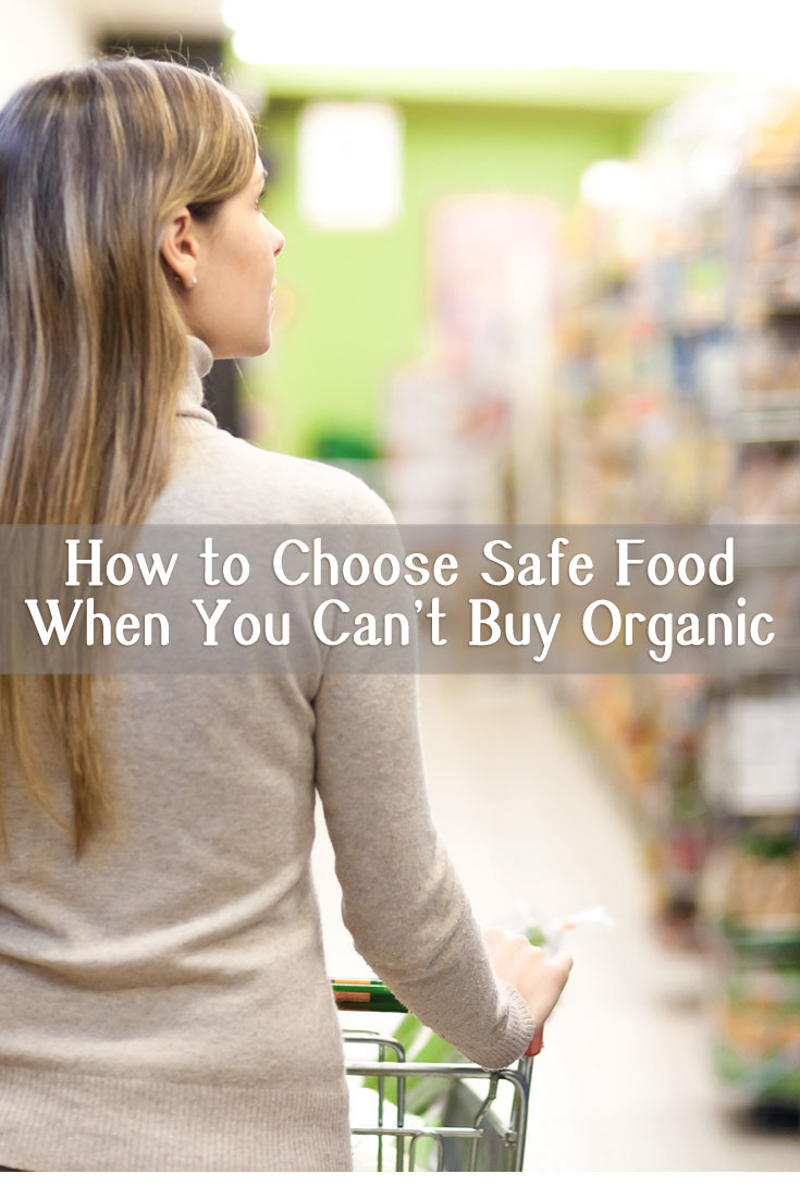 0715-safer-nonorganic-choices
