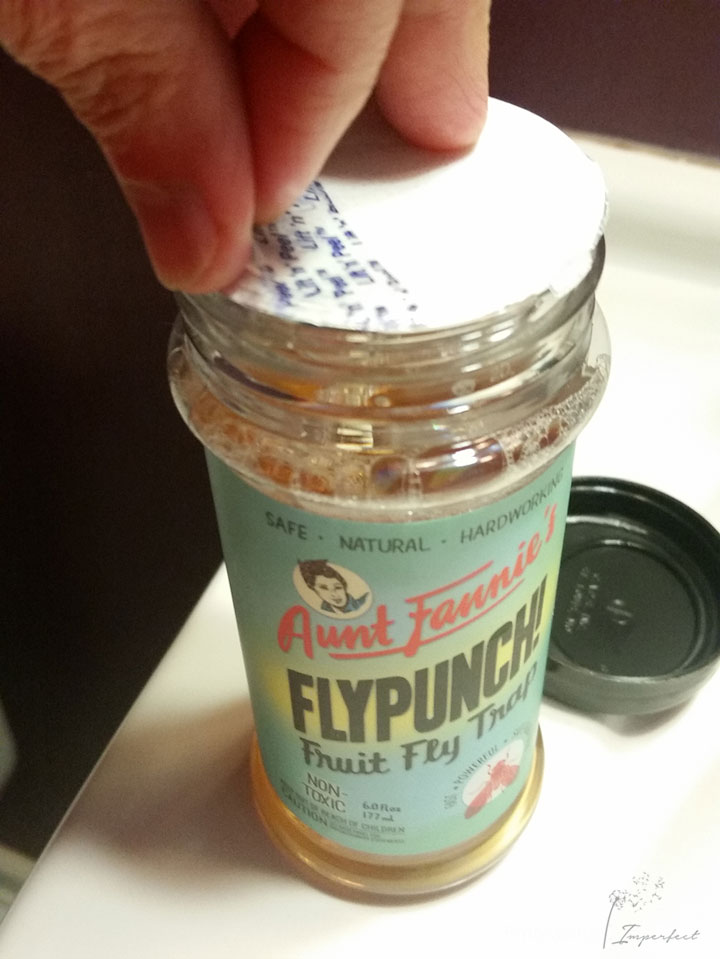 #plantbased #naturalcleaning flypunch from Aunt Fannie's for #HealthierHousekeeping