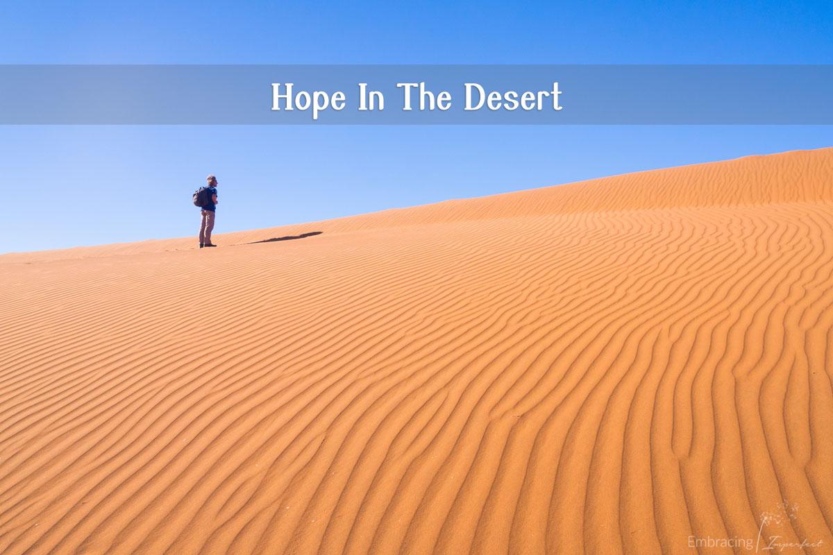 1116-desert